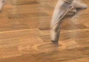 Zela Clubs - Wooden Sports Floors