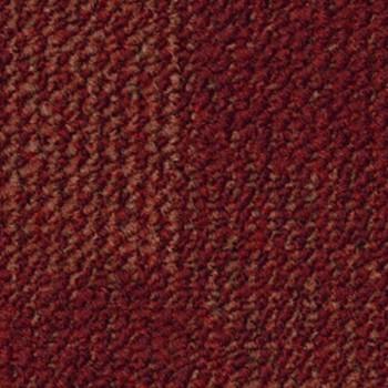 5021-5021.jpg