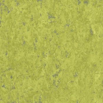 absinthe-th_1871695_001.jpg