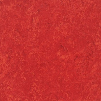 carmine-th_1871645_001.jpg