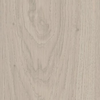 oak-larino-37444-oak-larino.jpg
