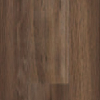 soft-oak-brown-3977007.jpg