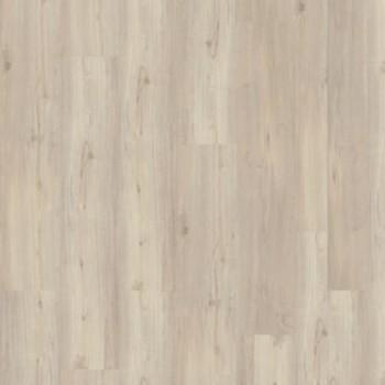 soft-oak-white-3977011.jpg