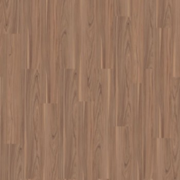 walnut-light-brown-3976034.jpg