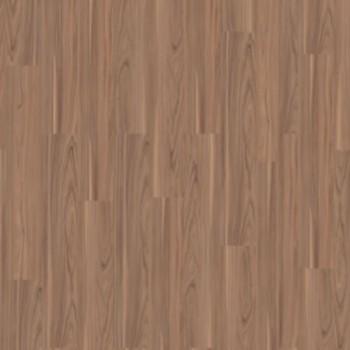 walnut-light-brown-3976034.jpg