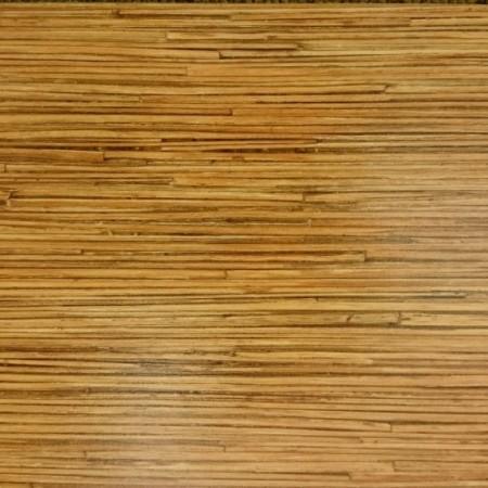 seagrass-spirit